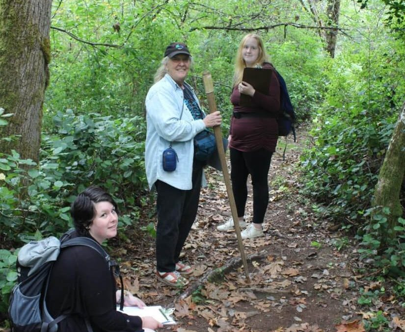 Ecological Inventory of Seal Bay Nature Park and Forest 2019