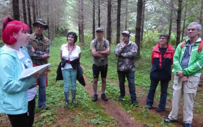 Cumberland Forest Youth Led Public Tour August 20th AT 12:00 pm